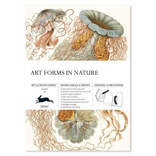 Gift & Creative Paper ART FORMS IN NATURE