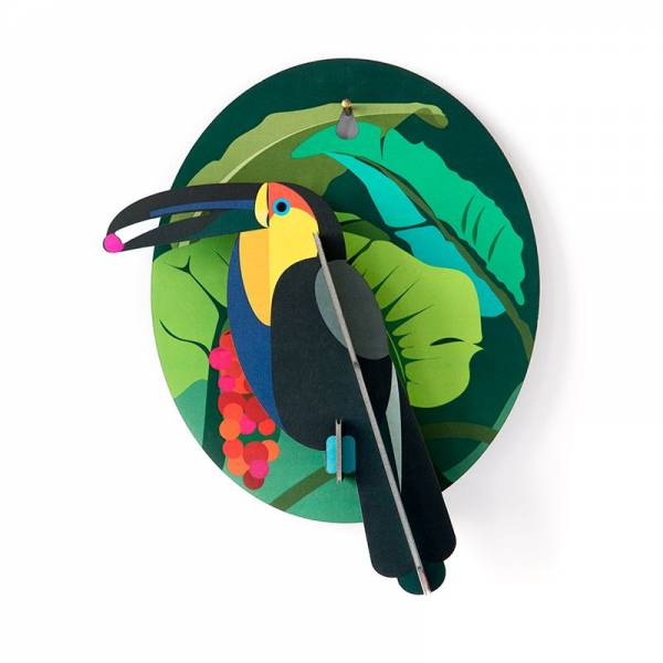 EXOTIC BIRD TOUCAN