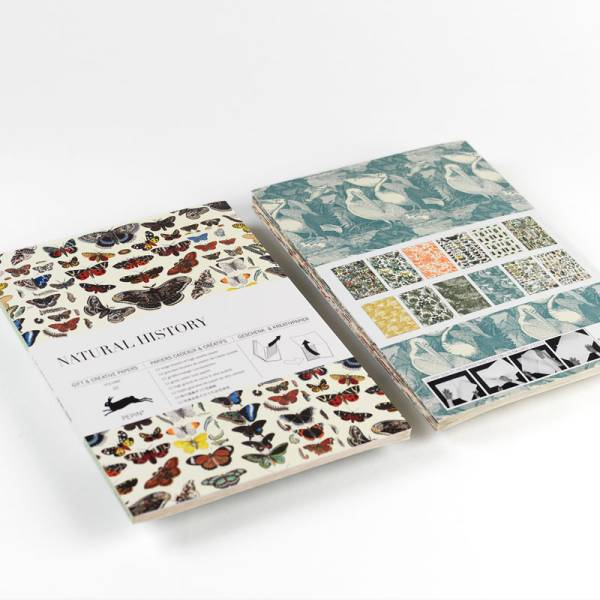 Gift & Creative Paper NATURAL HISTORY