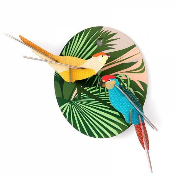 EXOTIC BIRD PARAKEETS