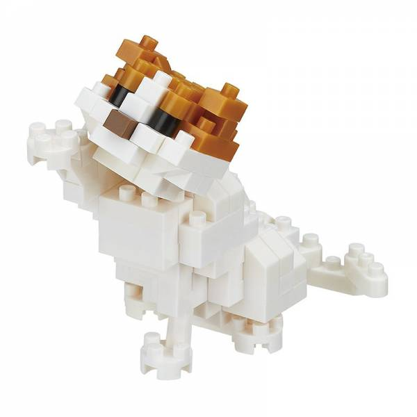 Mini NANOBLOCK Cat breed scottish fold